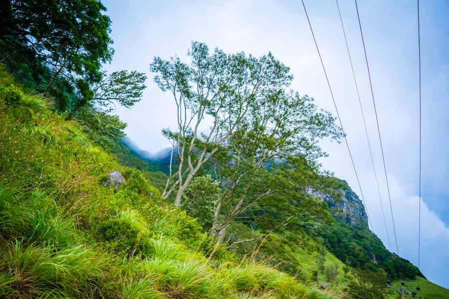 Nature at Hunnasgiriya