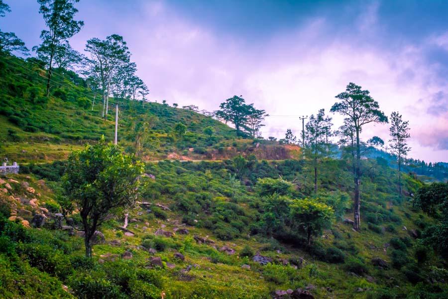 Road between Hunnasgiriya to Meemure